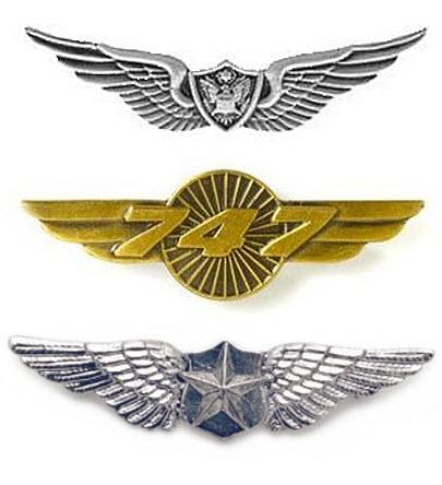 Pilot wings pin