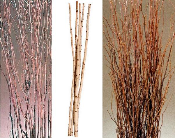 Decorative dried birch tree branches